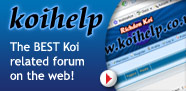 Koihelp - The BEST Koi Carp related forum on the web!